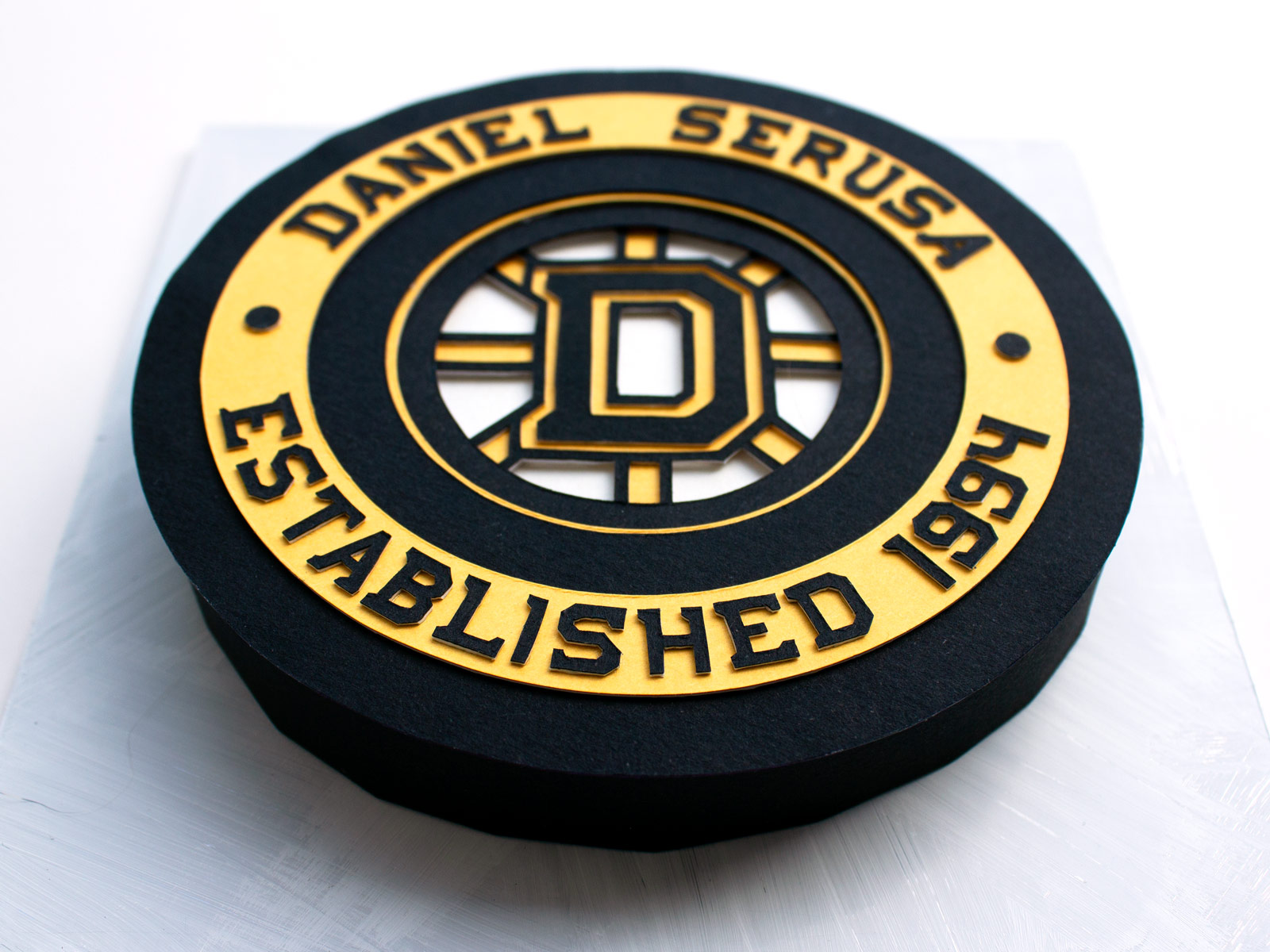 Hockey Puck (Side View)