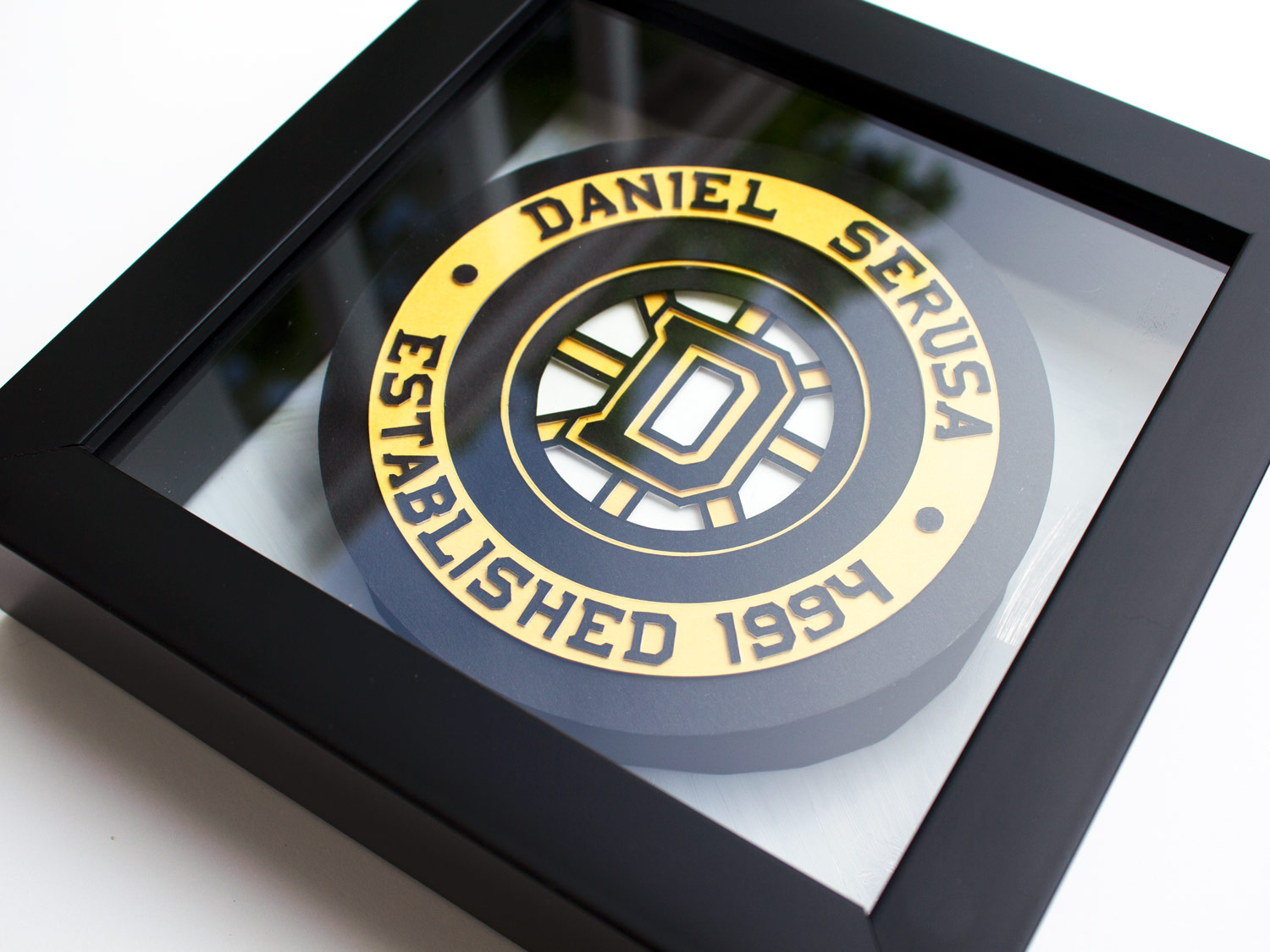 Framed Hockey Puck with Glare